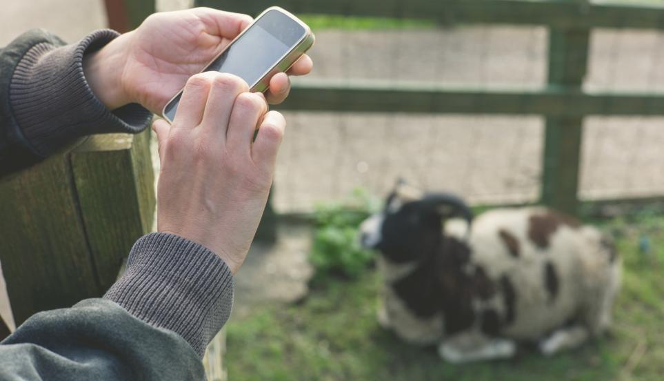 Internet of things sensors | smart farming | smart packaging